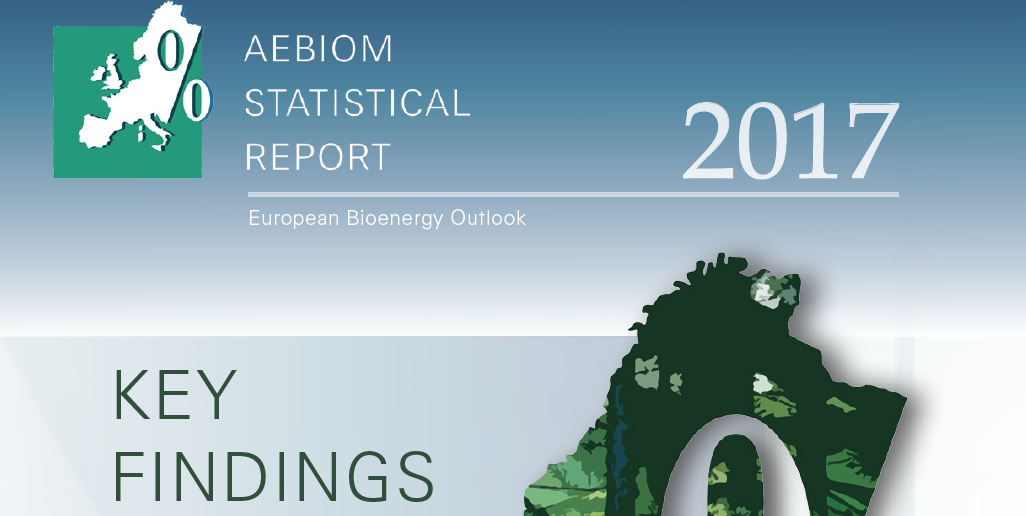AEBIOM Statistical Report